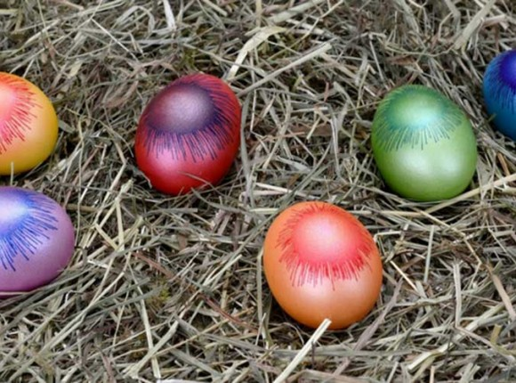 Easter Eggs Hunting for Kids on Saturday 15th April 2017